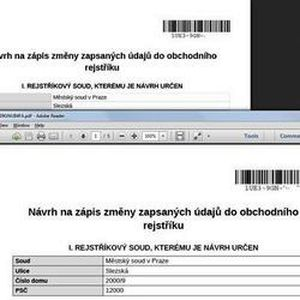 В новом, 2014-м году бланки для он-лайн подач на сайте Минюста изменятся